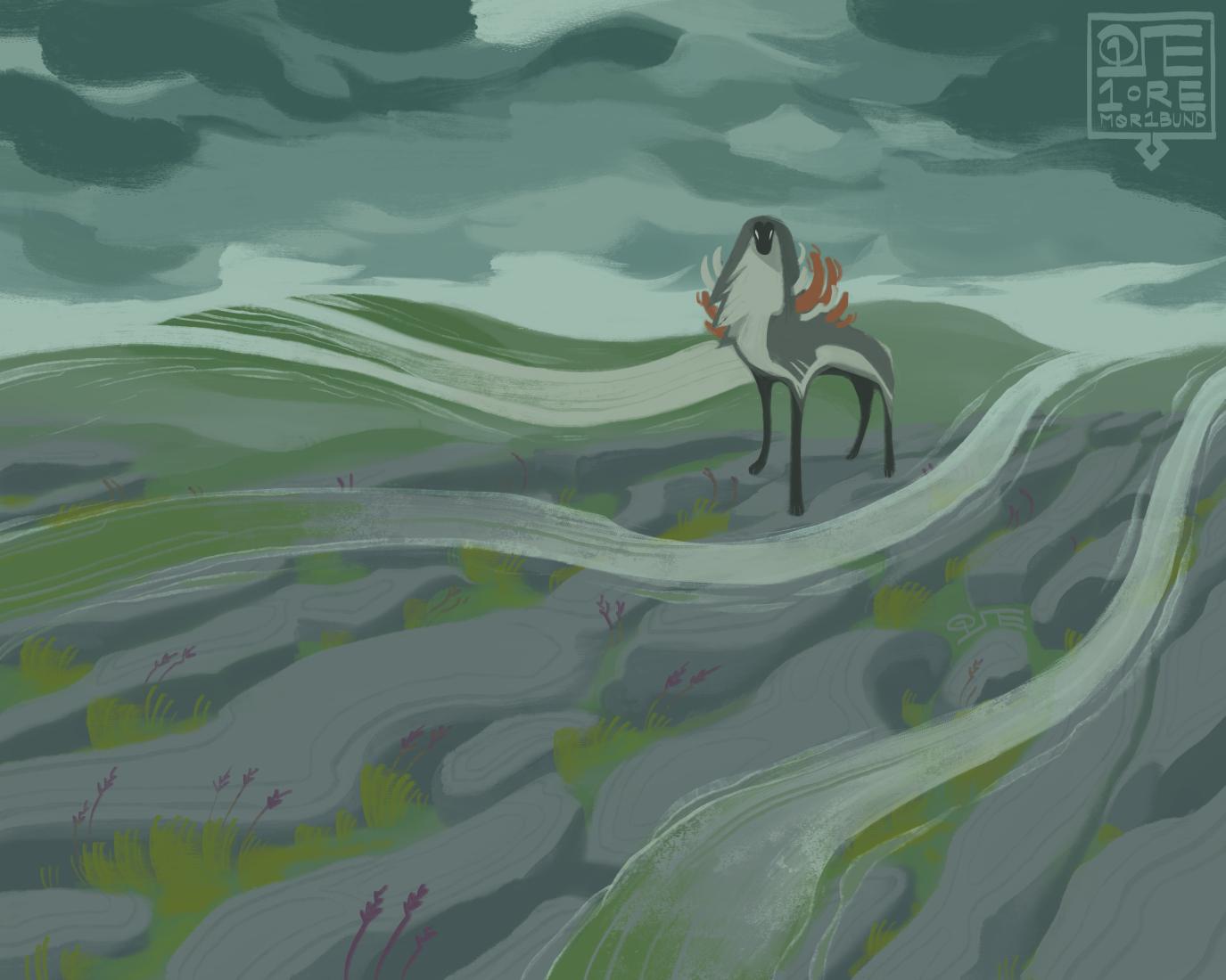 Burren Grass