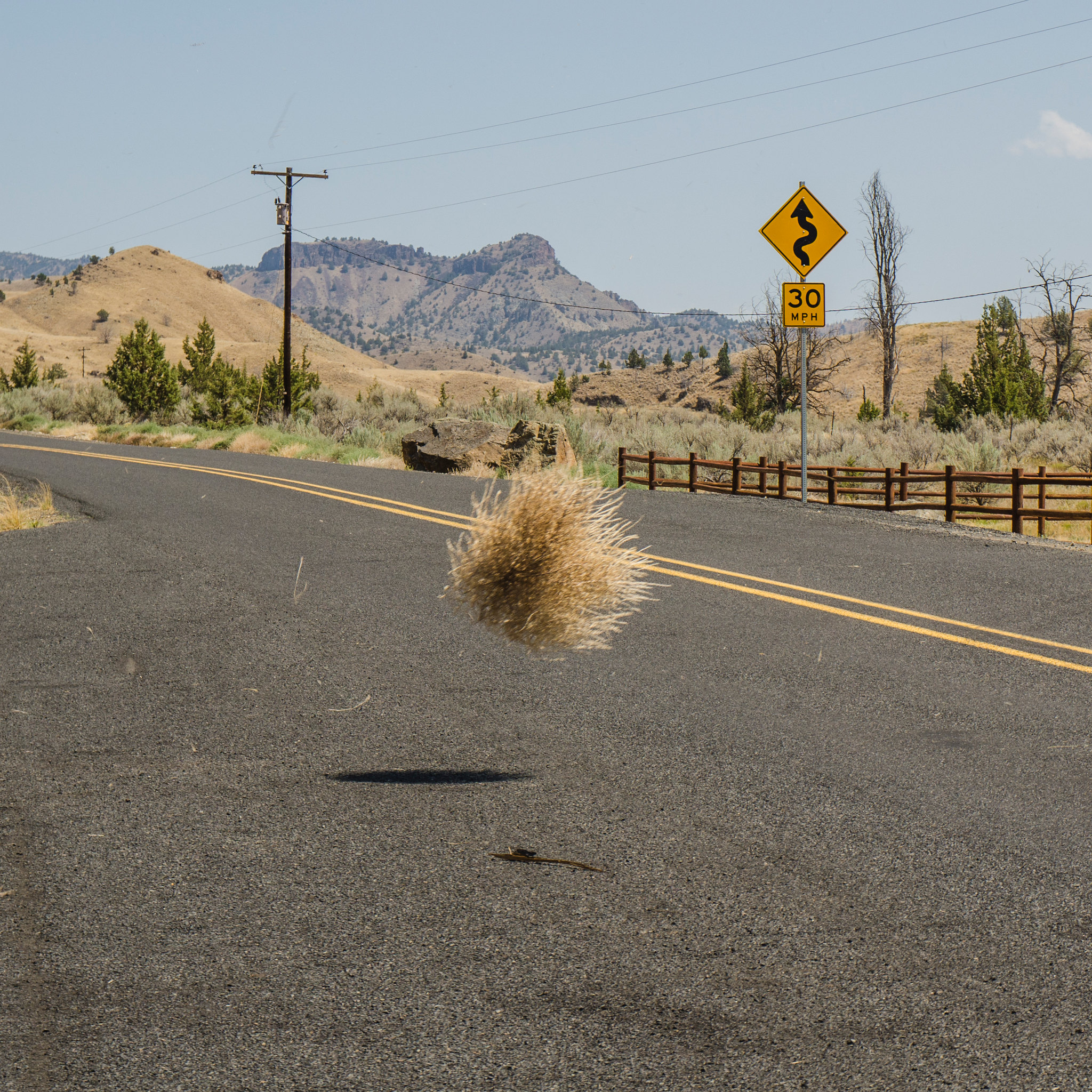 A tumbleweed bouncing over a highway.